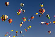 Balloon Fiesta Posters - Many Vividly Colored Hot Air Balloons Poster by Ralph Lee Hopkins