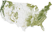 Cartography Photos - Map Of The United States Showing by Stocktrek Images