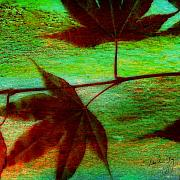 Japanese Mixed Media - Maple Leaf 1 by Paul Gaj