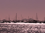 John Basford - Mar Menor