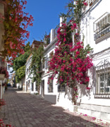 Old Houses Metal Prints - Marbella Old Town Metal Print by Kenton Smith