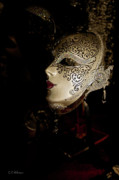 Christopher Holmes Metal Prints - Mardi Gras Mask Metal Print by Christopher Holmes