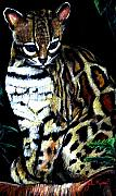 John Keaton Art - Margay Cat by John Keaton