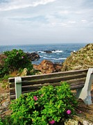Ogunquit Prints - Marginal Way Print by Diane Valliere