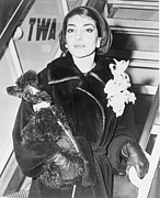 Soprano Framed Prints - Maria Callas 1923-1977, Holding A Pet Framed Print by Everett