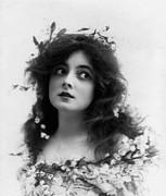 Actress Photos - Marie Doro 1902 by Stefan Kuhn