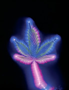 Dope Prints - Marijuana Leaf, Kirlian Photograph Print by Boothgarion