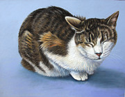 Cute Cat Pastels Prints - Marilyn Print by Deb LaFogg-Docherty