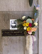 Marilyn Photos - Marilyn Monroes Burial Vault by Everett