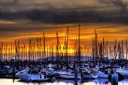 Gardner Framed Prints - Marina at Sunset Framed Print by Brad Granger