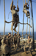 Military Training Prints - Marines Climb Ropes While Running Print by Stocktrek Images