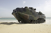 Beachhead Posters - Marines Navigate An Amphibious Assault Poster by Stocktrek Images