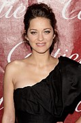 Tendrils Prints - Marion Cotillard At Arrivals For 21st Print by Everett