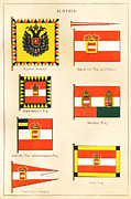 National Drawings Posters - Maritime Flags of Austria circa 1876 Poster by Steven Wynn