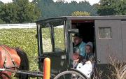 Amish Family Photos - Market Day by David Bearden
