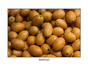 Mango Photo Posters - Market Mangoes against white background Poster by Zoe Ferrie