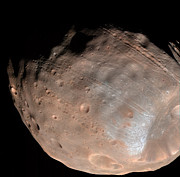 Topography Photos - Mars Moon Phobos by Stocktrek Images