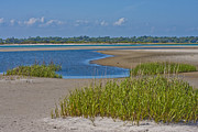 Topsail Island Photos - Marsh Land by East Coast Barrier Islands Betsy A Cutler