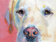 Labrador Retriever Painting Framed Prints - Marthas Pink Nose Framed Print by Kimberly Santini