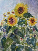 Quin Sweetman Paintings - Marthas Sunflowers by Quin Sweetman
