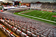 Bleachers Art - Martin Stadium at WSU by David Patterson