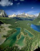 Aerial Photos Posters - Mary Lake And Lake O Hara, Yoho Poster by David Nunuk