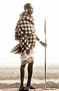 Tanzania Framed Prints - Masai Framed Print by Tim Booth