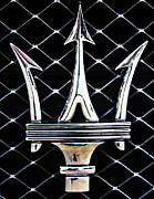 Car Emblems Prints - Maserati Emblem Print by Tom Griffithe