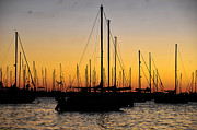 Sailing Ships Prints - Masts at sunset Print by David Lee Thompson