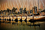 Docked Sailboats Prints - Masts Print by Cheryl Young