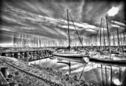 Sound Digital Art - Masts in Harbour by Dale Stillman