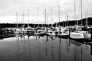 Searcy Prints - Masts Over And Under Print by Tanya  Searcy