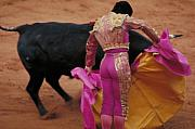 Bulls Metal Prints - Matador and Bull Metal Print by Carl Purcell