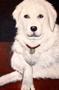 Dog Portrait Originals - Matisse- Portrait of a Hungarian Kuvasz by Nancy Mueller