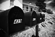 Tenn Prints - matt black american private mailboxes in front of houses Lynchburg tennessee usa Print by Joe Fox