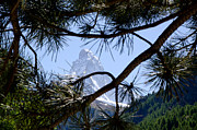 Matterhorn Prints - Matterhorn Print by Mats Silvan
