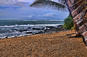 ; Maui Framed Prints - Maui Beach Framed Print by Jon Berghoff