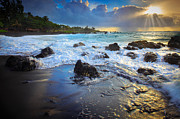 Backlit Prints - Maui Dawn Print by Inge Johnsson