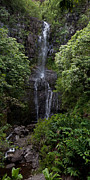 Hana Prints - Maui falls Print by James Roemmling