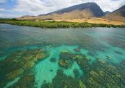 Maui Landscape Print by Ron Dahlquist - Printscapes