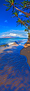 Maui Photo Posters - Maui palms Poster by James Roemmling