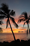 Lahaina Prints - Maui Sunset Palms Print by Kelly Wade