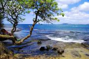 Woman Relaxing Framed Prints - Maunalua Bay Framed Print by Kevin Smith
