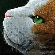 Linda Apple Metal Prints - Max - neighbor cat painting Metal Print by Linda Apple