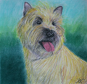 Dog Print Pastels Framed Prints - Max Framed Print by Jose Valeriano