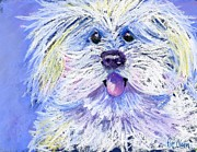 Dog Portrait Pastels - Max by Pat Olson