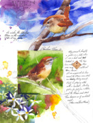 Wren Paintings - May 20 Wren by Stan Fellows