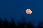 Michelle Wiarda - May 5 2012 Super Moon in South Florida
