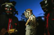 Mayan Jaguar Prints - Maya Dancers Dressed As Hunters Print by Steve Winter
