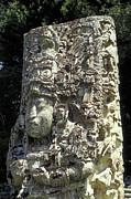 Maya Stela Copan Honduras Print by John  Mitchell
